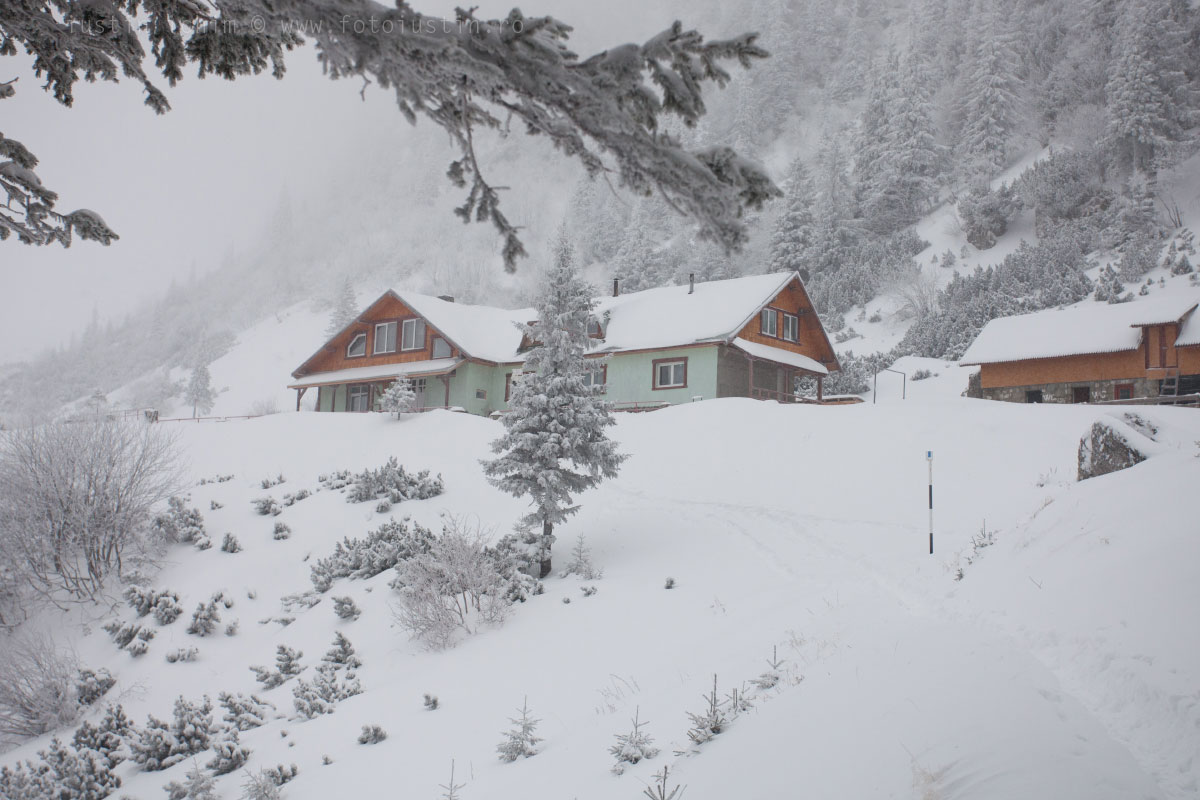 Cabana Malaiesti, iarna