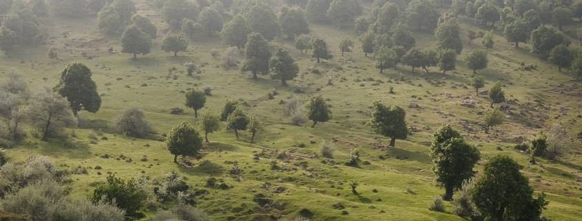Peisaj in munții Măcin