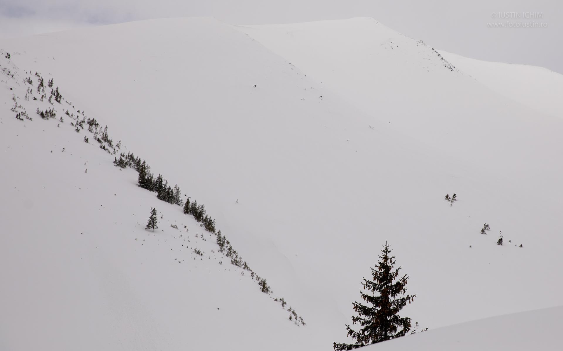 Peisaj de iarna in Fagaras