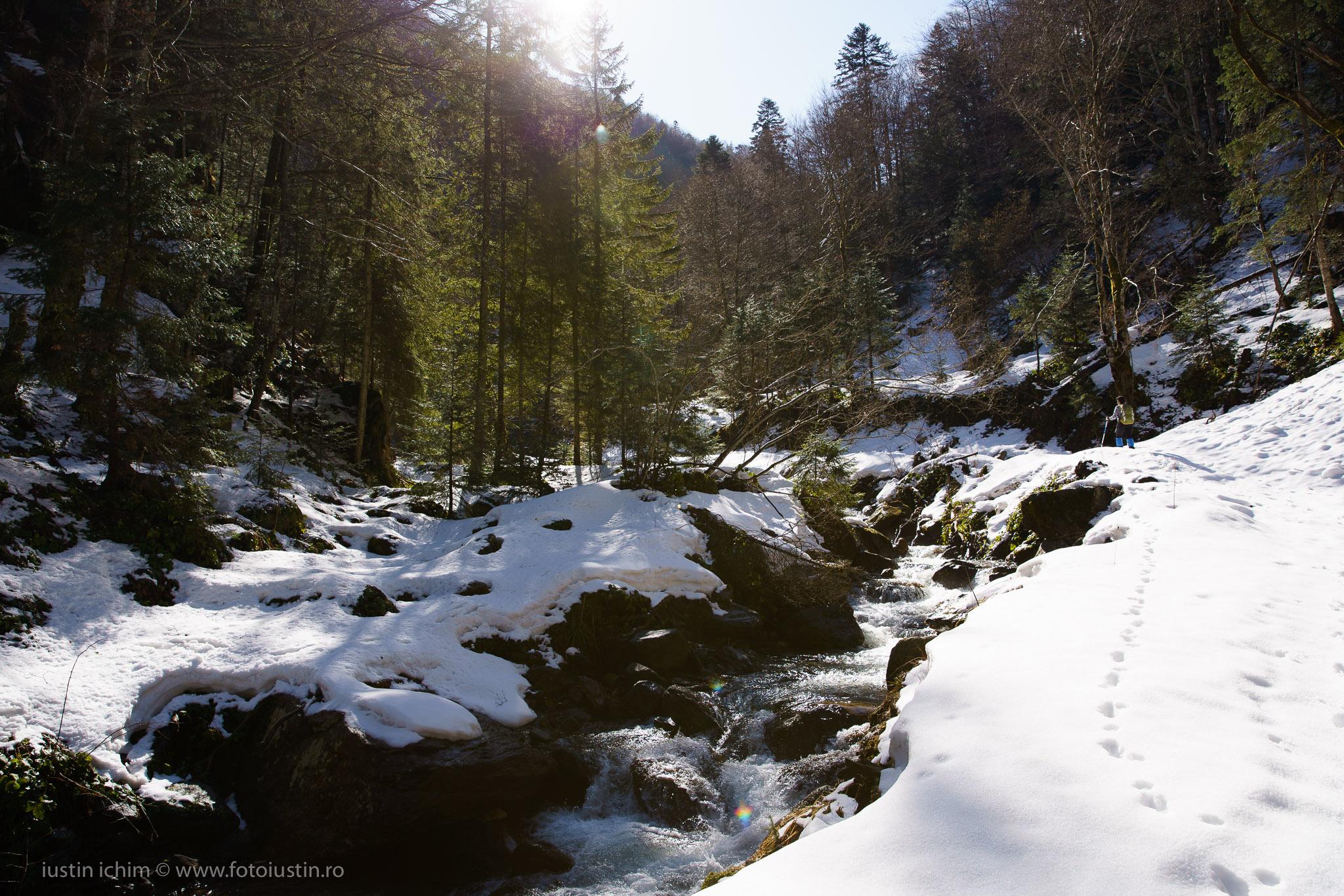 Traseu pe valea Brezcioara