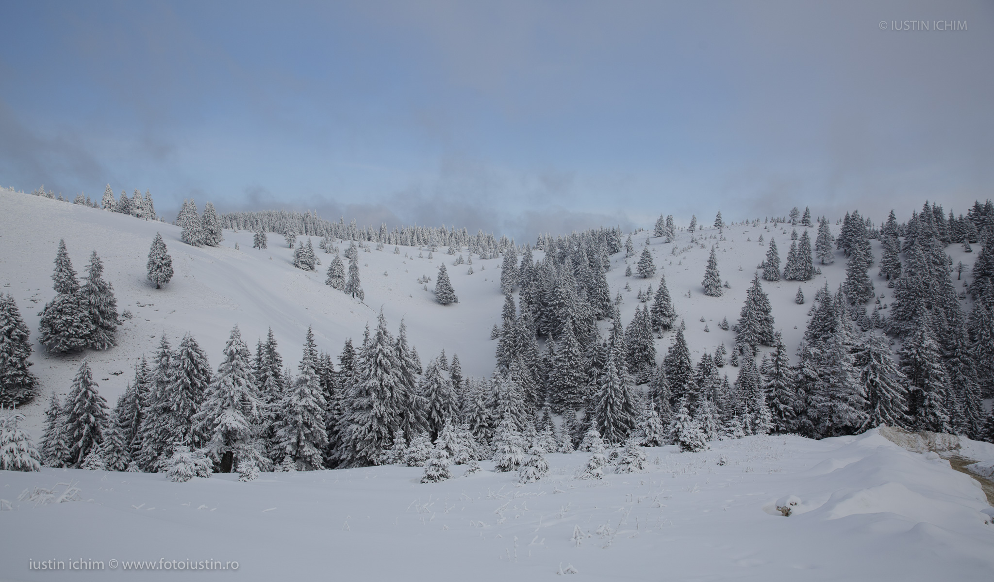 Peisaje de iarnă