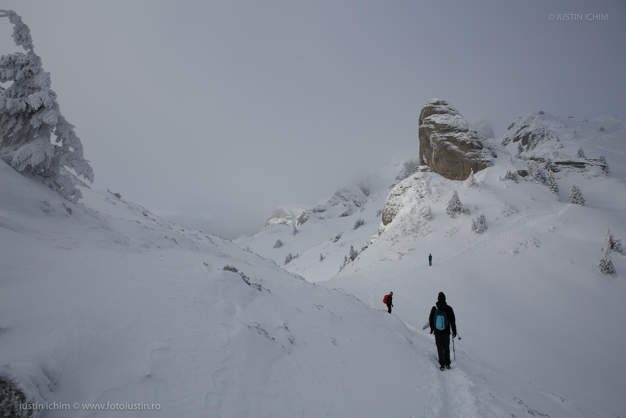 Traseul spre vf. Ciucaș