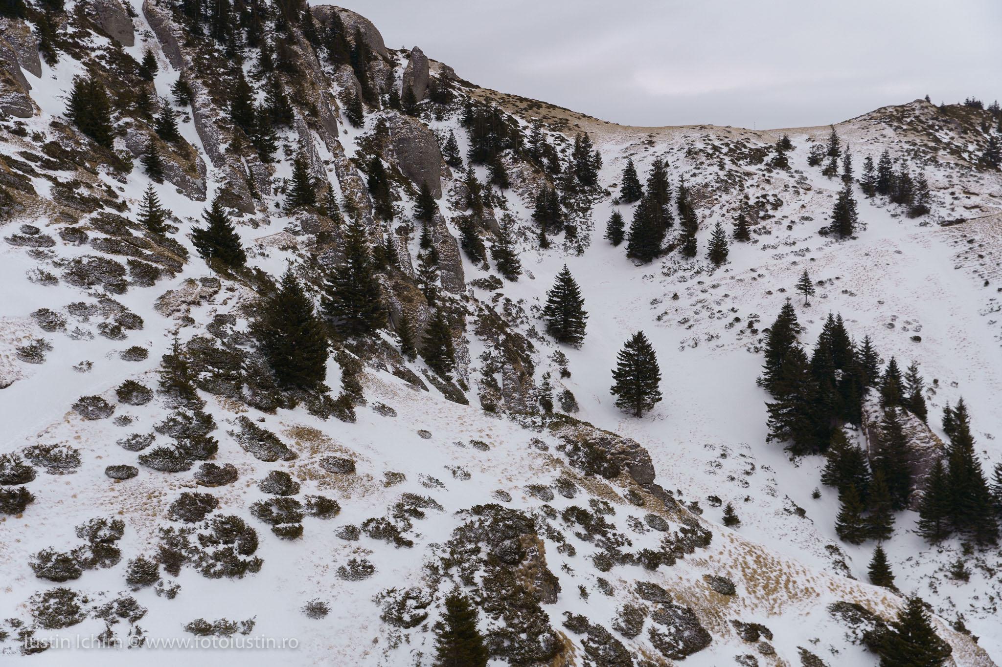 Rezervația Tigăile din Ciucaș