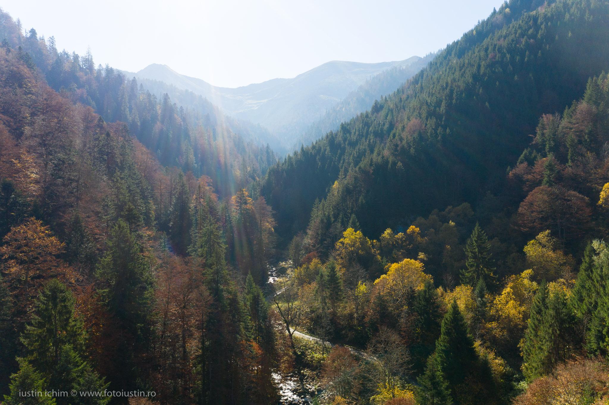 Râul Mare, Valea Porumbacului