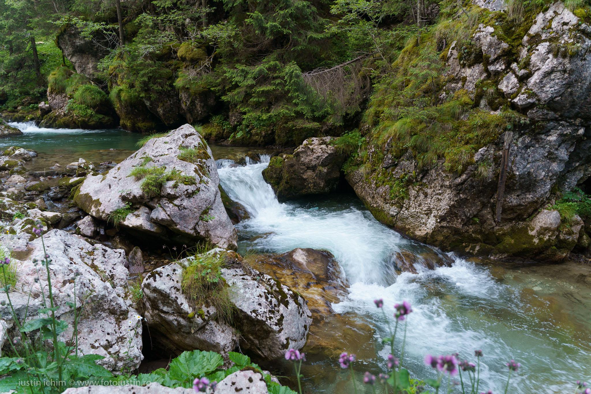 Râul Ialomița