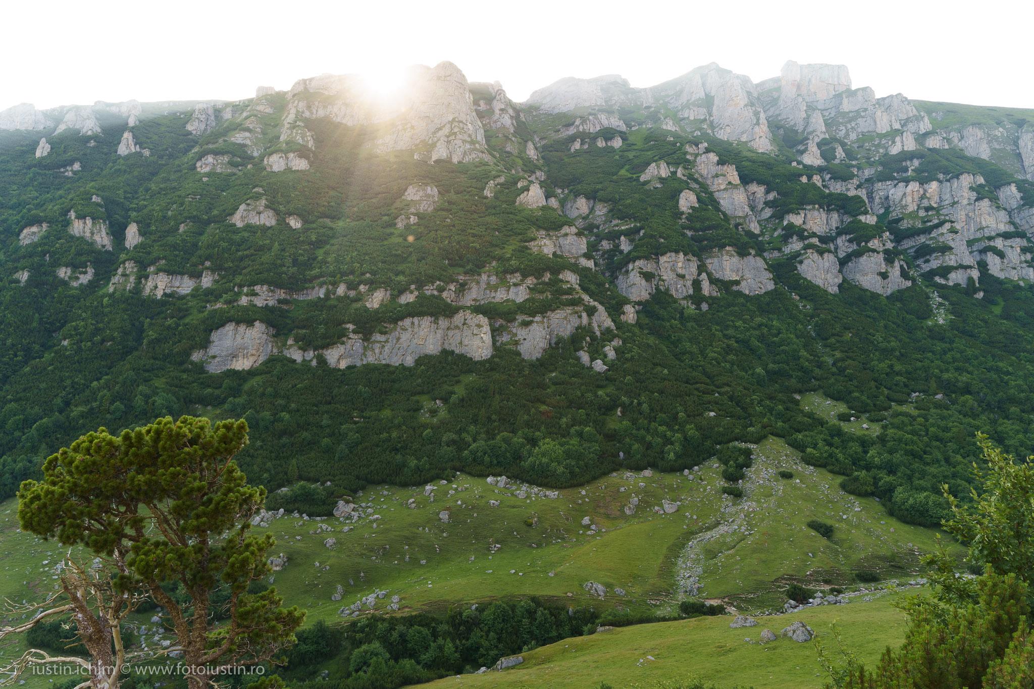 Culmea Doamnele, Valea Obârșiei