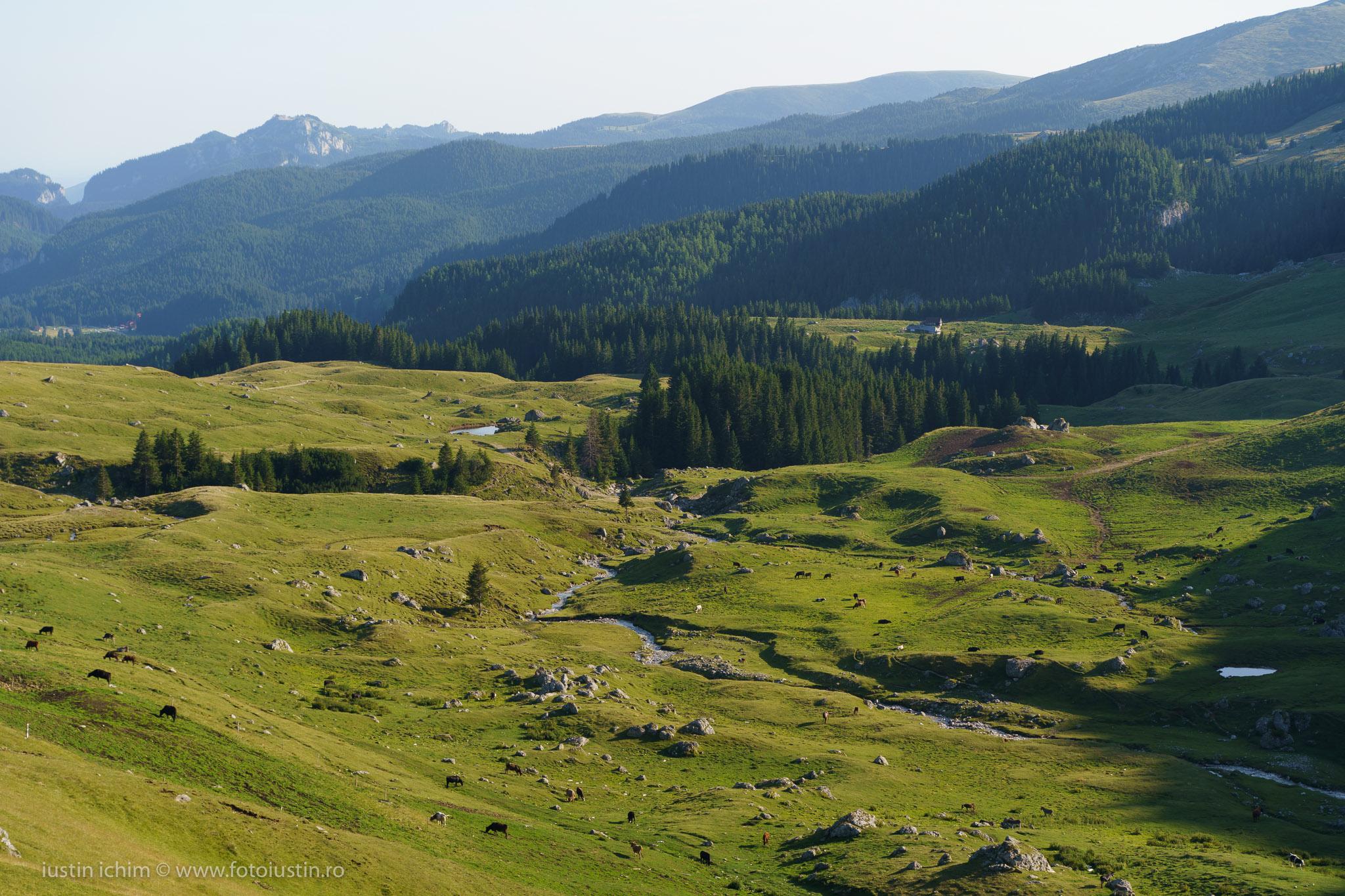 Peisaj Bucegi, Râul Ialomița