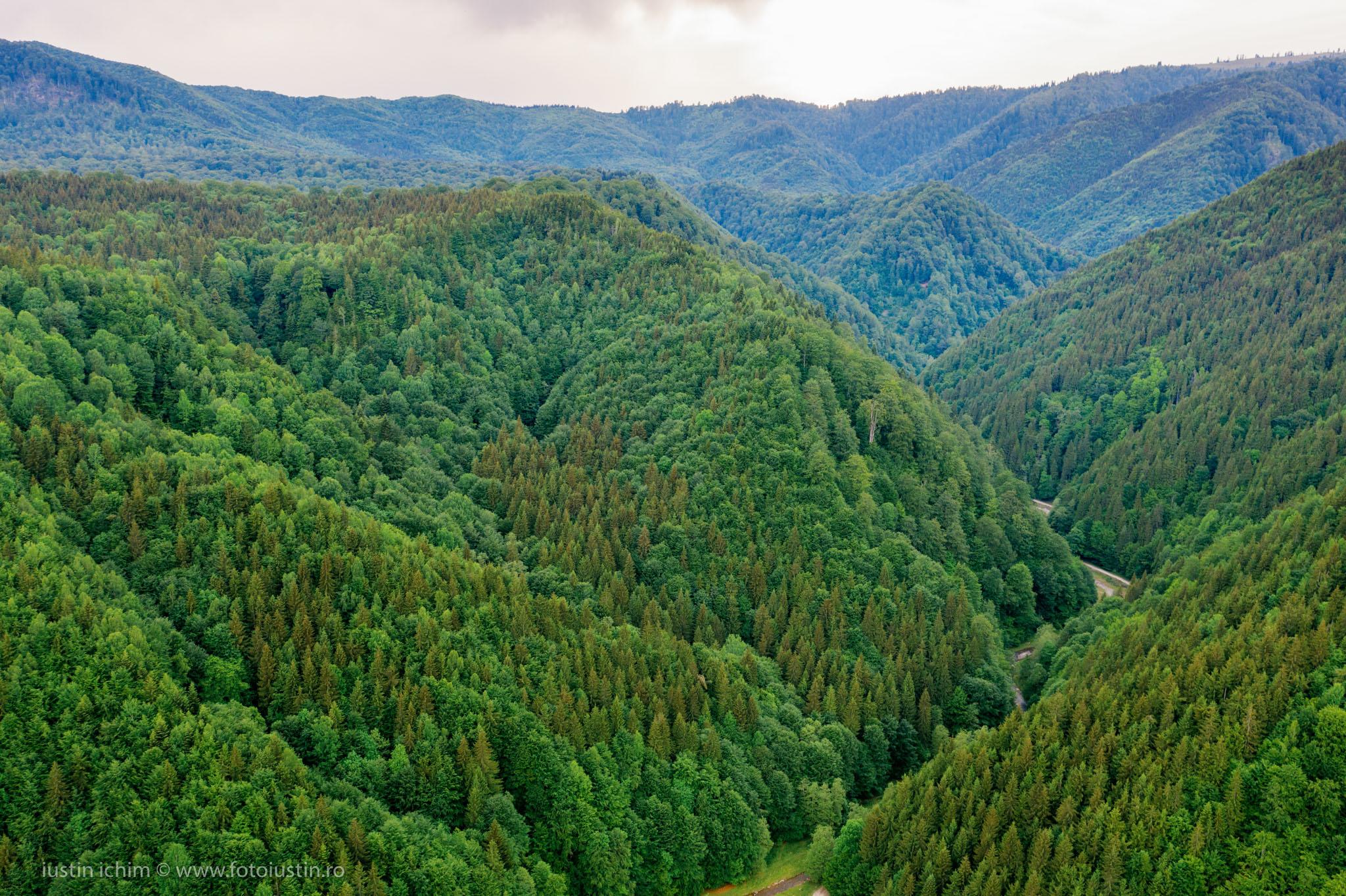 Munții Făgăraș, Comuna Nucșoara