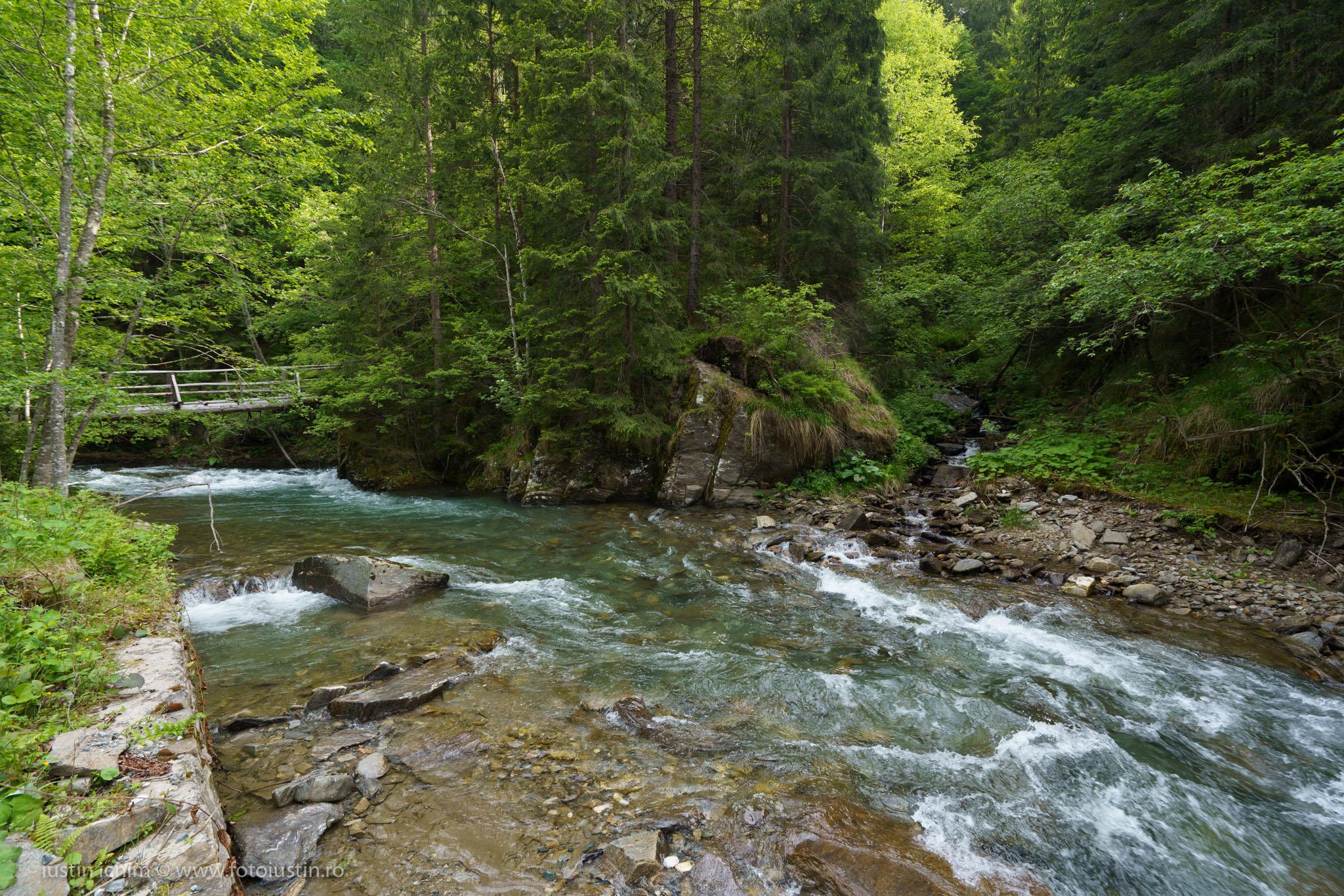 Râul Valea Rea