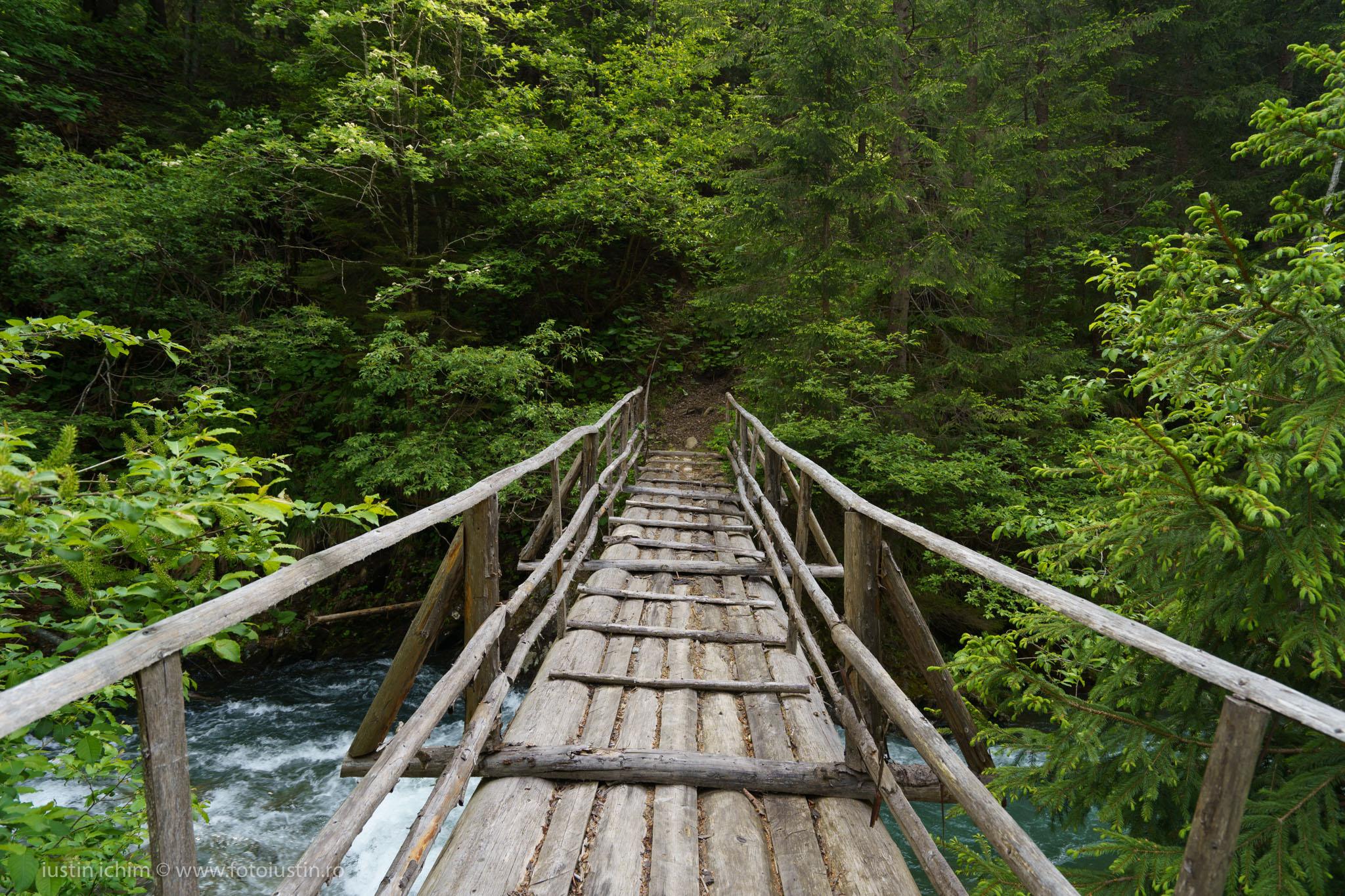 Podeț peste Râul Valea Rea
