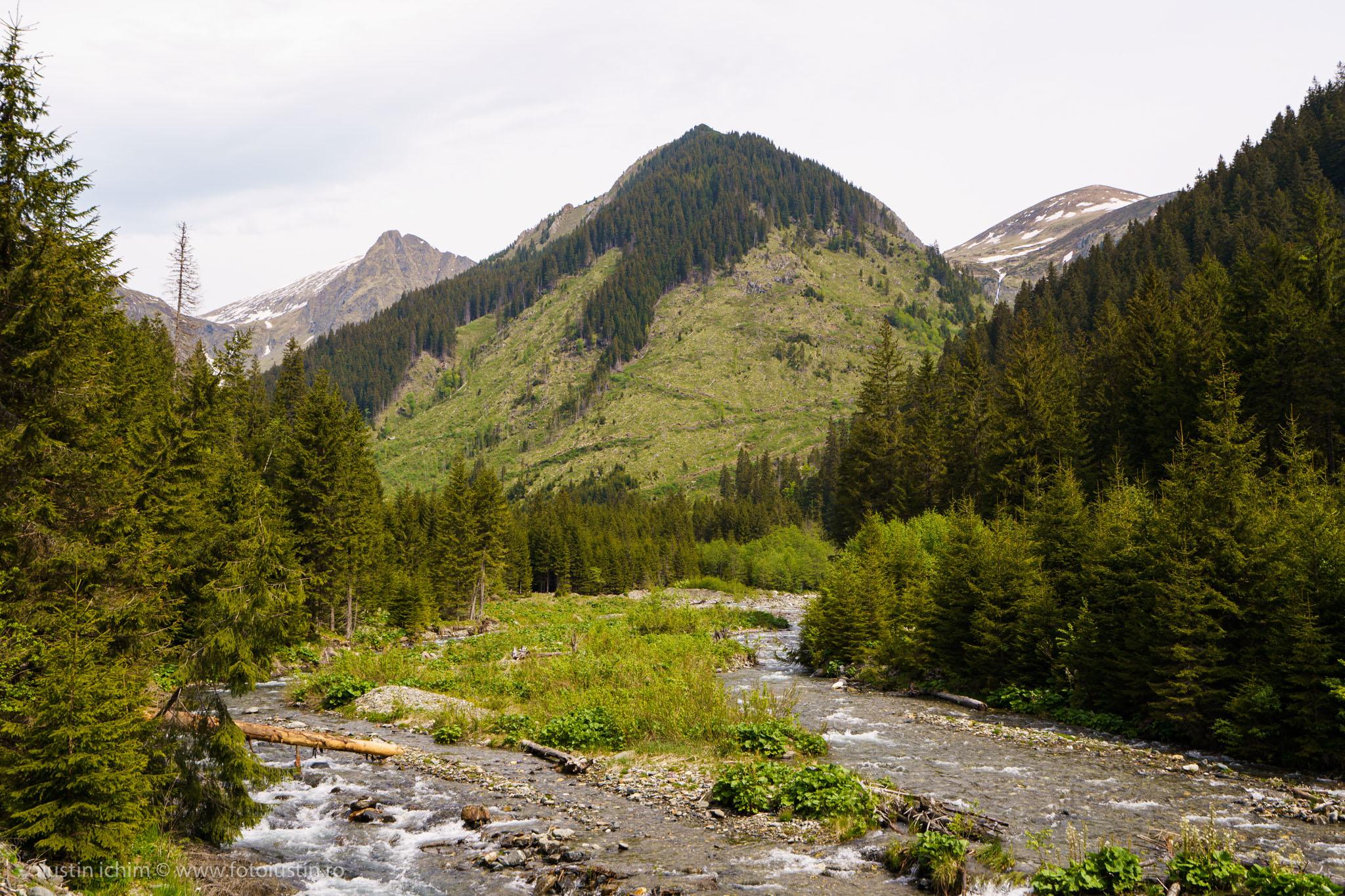 Munții Făgăraș, Valea Rea