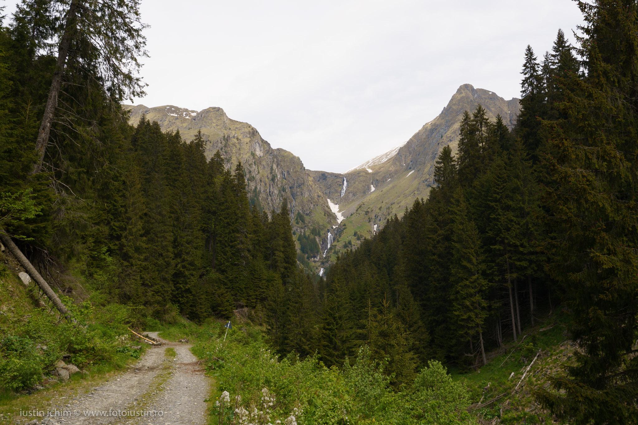 Munții Făgăraș, drum Valea Rea