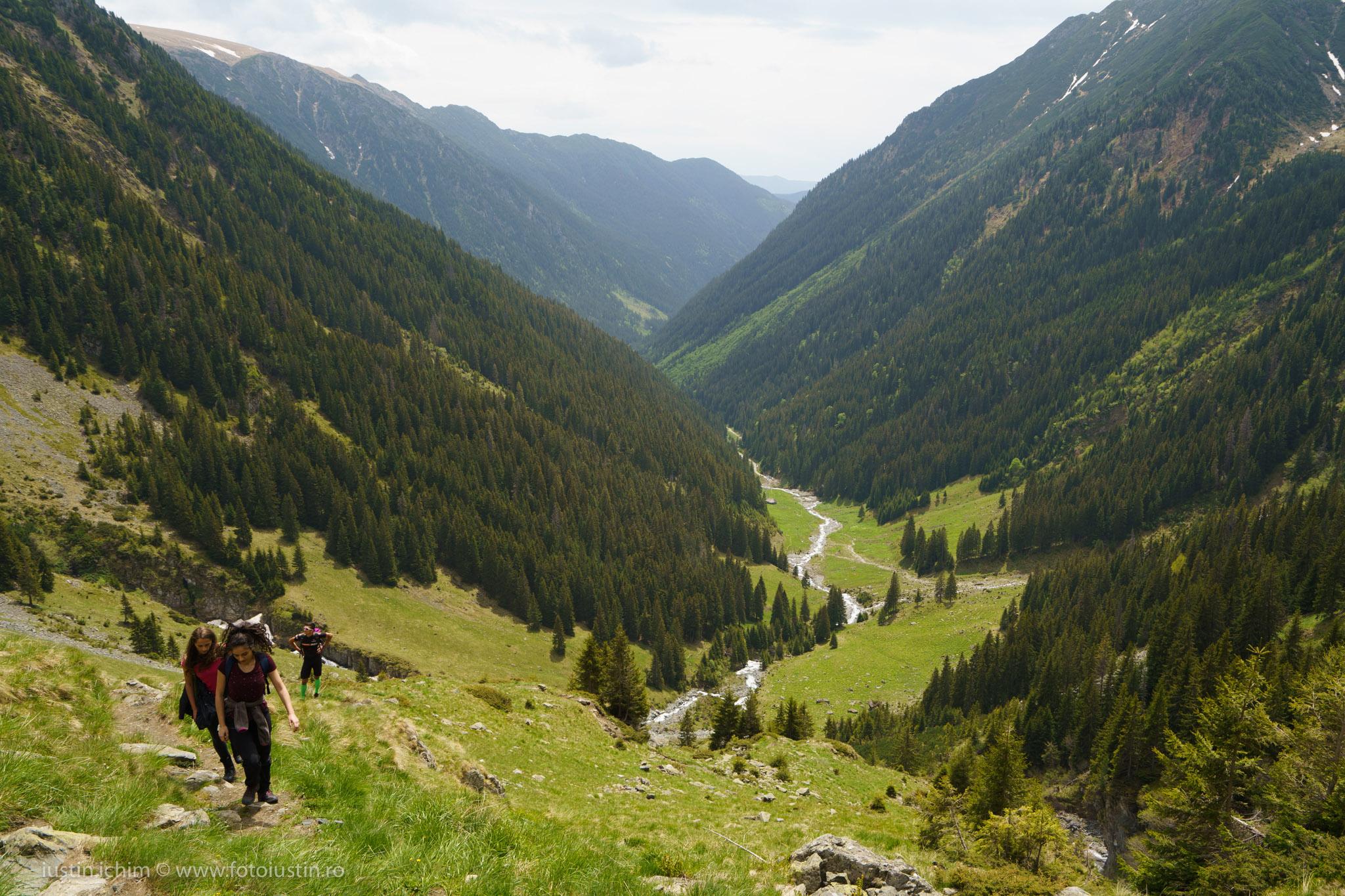 Valea Rea, Stana lui Burnei