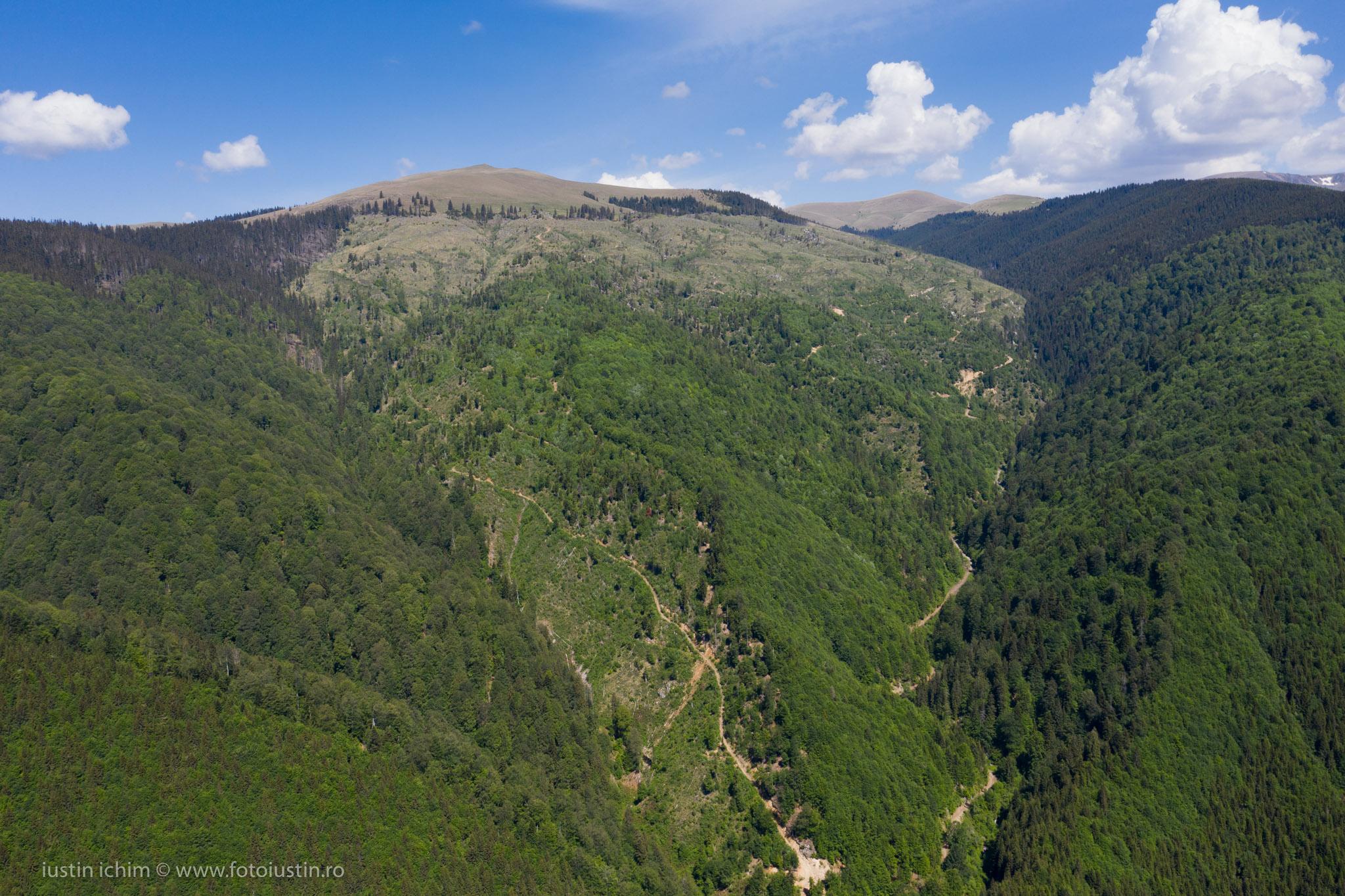 Muntele Urdea, Curmătura Maliței