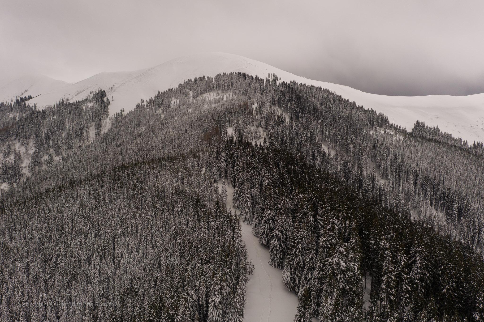 Traseu de iarnă prin nămeți spre Vf. Bucșa