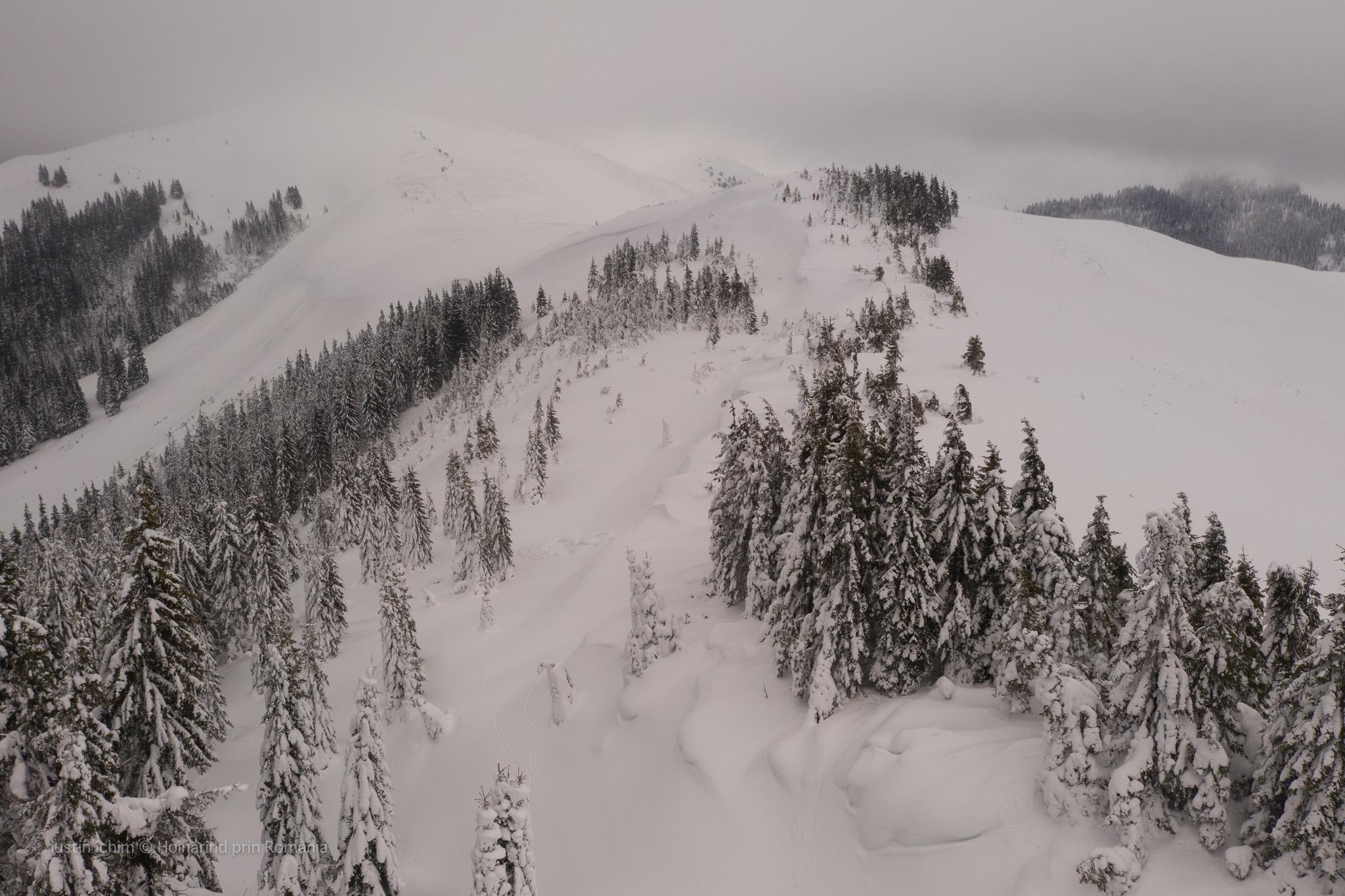 Peisaj cu troiene de zăpadă, vedere aeriană
