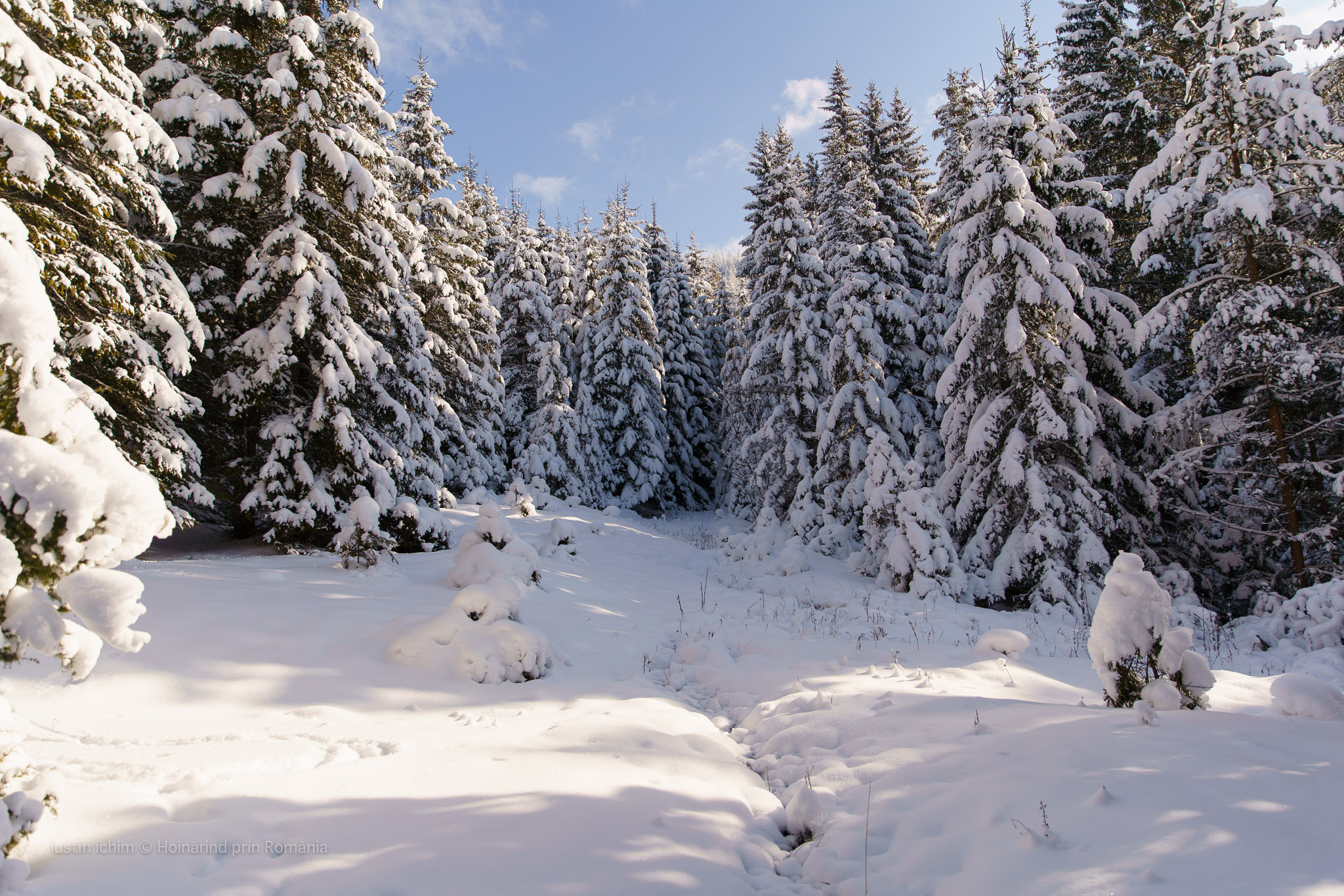 Peisaj de iarnă, traseu in Hășmaș