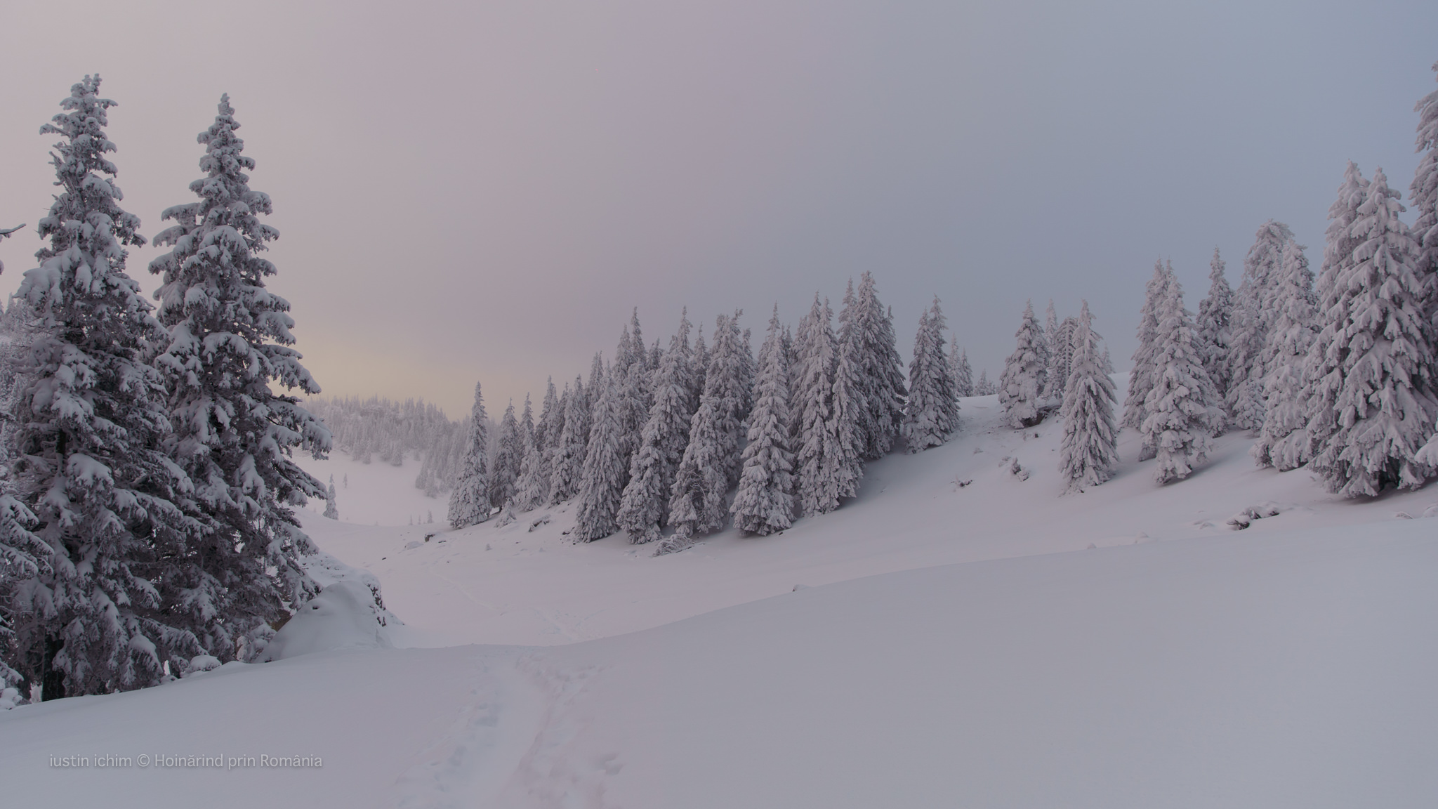 Peisaj de iarnă