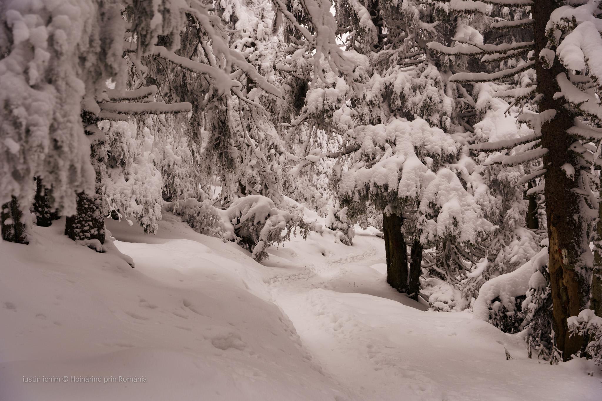 iarna pe traseu
