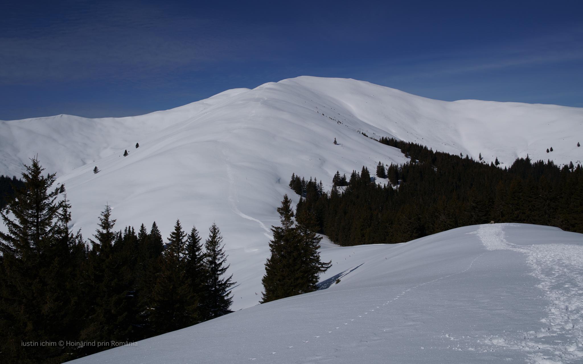 Traseu de iarnă in Leaota