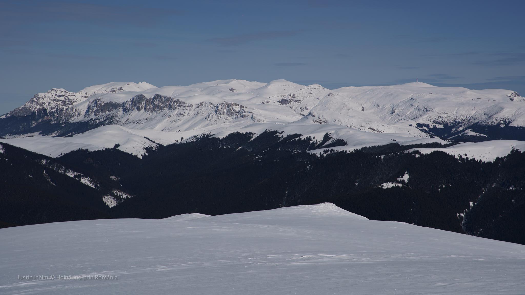 Munții Bucegi văzuți din Leaota