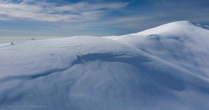 Peisaj, tablou, iarna in Leaota