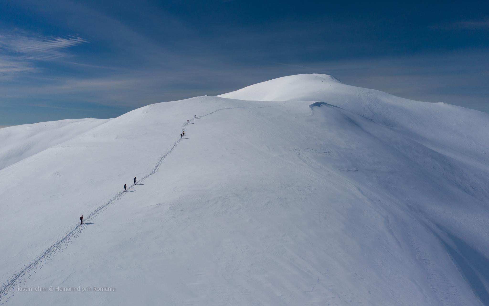 Peisaj de iarna, tablou, iarna in Leaota
