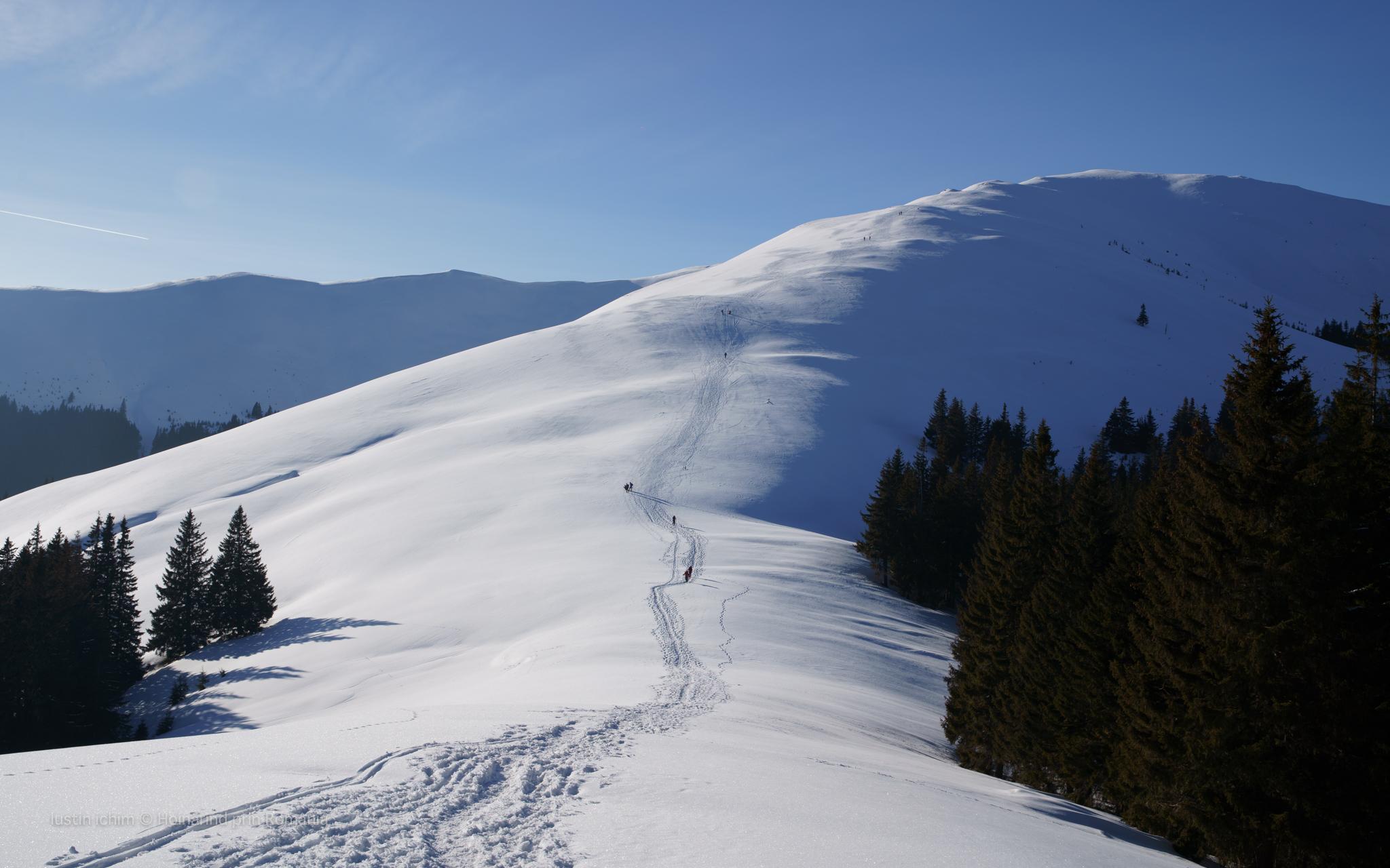 Leaota, urcare pe muntele Răteiul