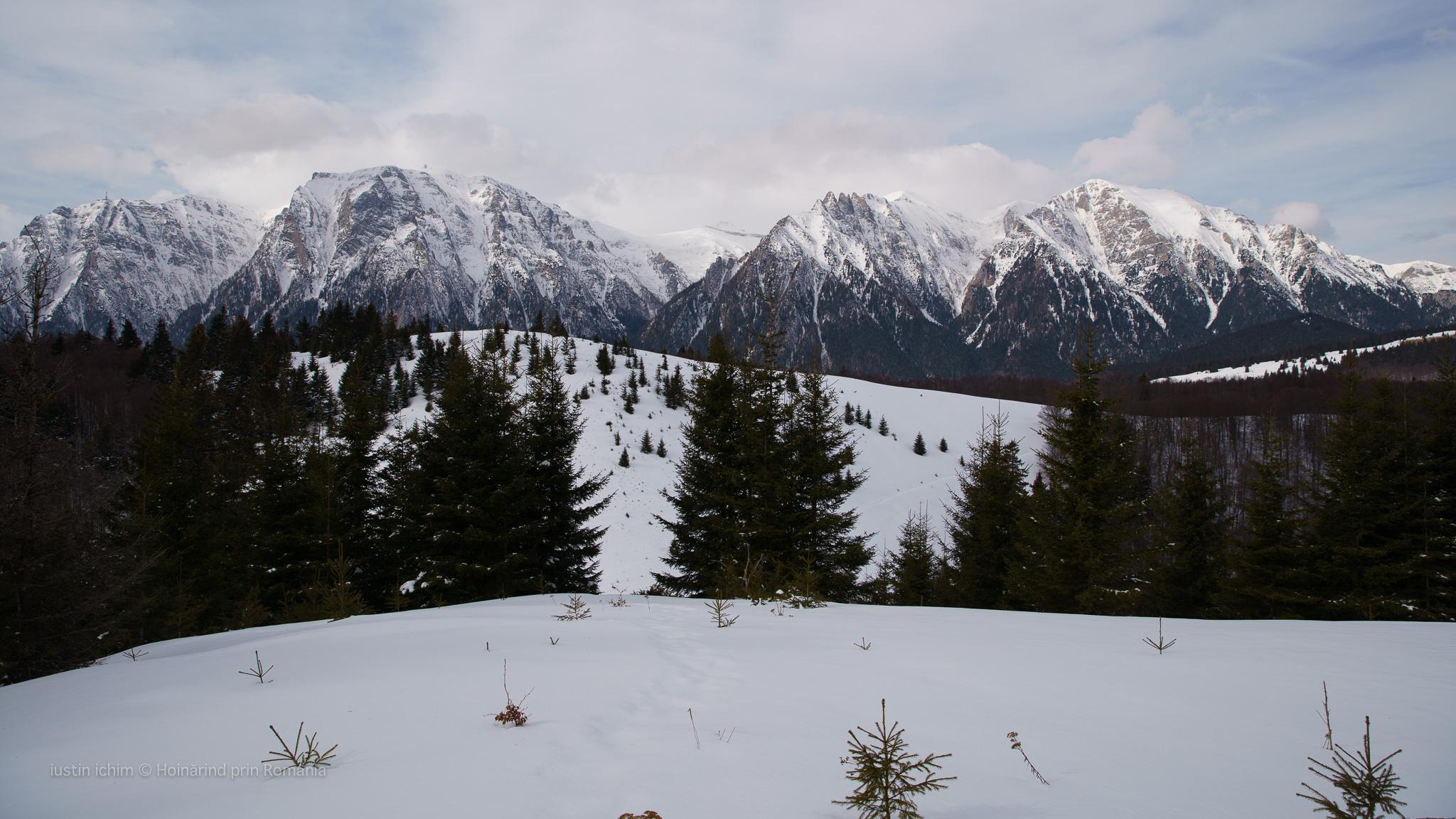 Munții Bucegi, vf. Grecului