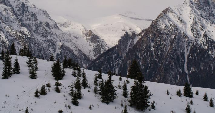Tablou de iarnă, Bucegi
