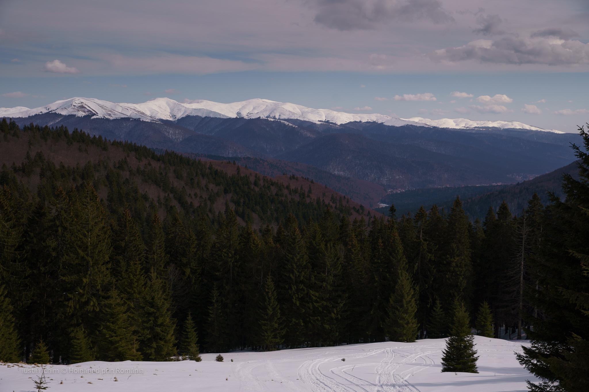 Munții Baiului, in depărtare