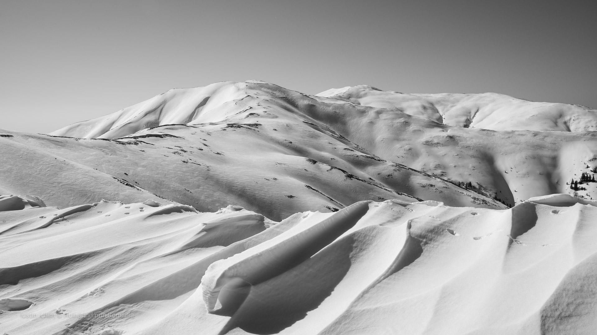 Șaua Cazacu, Vf. Băiuțul si Vf. Baiul Mic, Munții Baiului