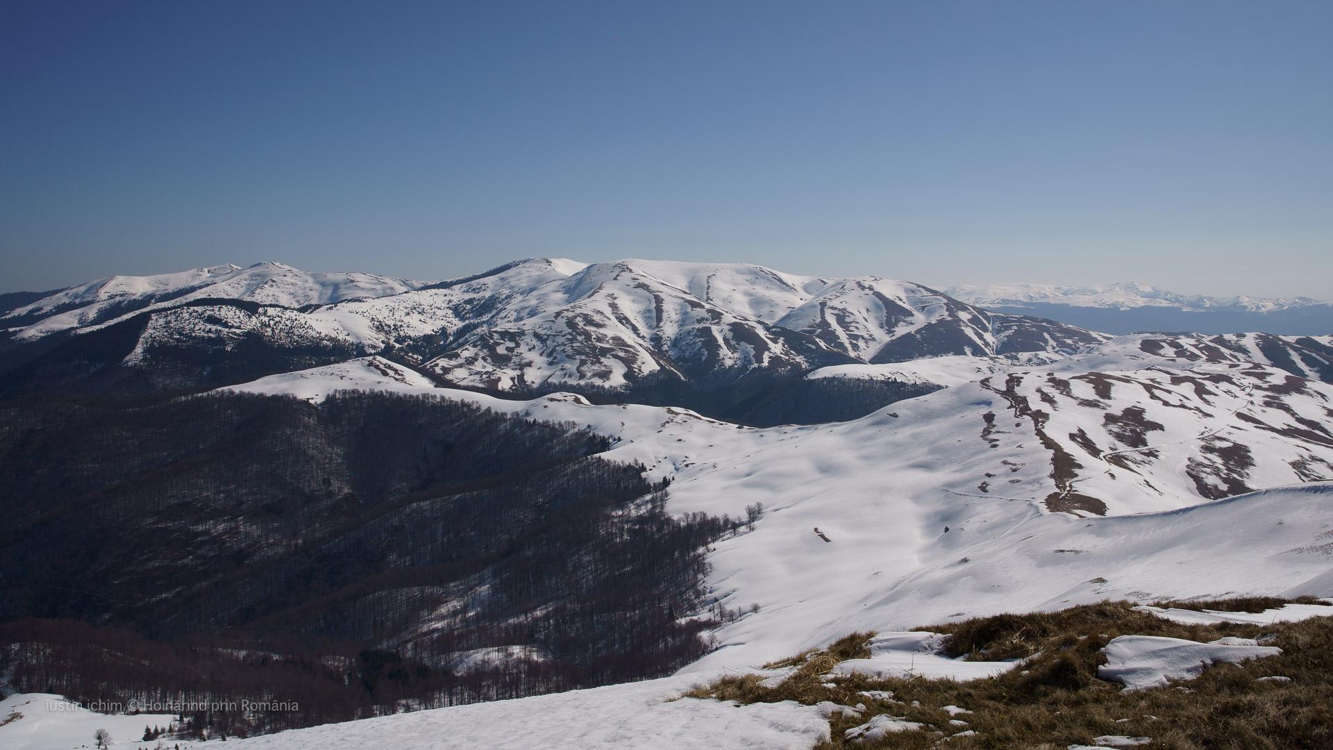 Munții Neamțului iarna