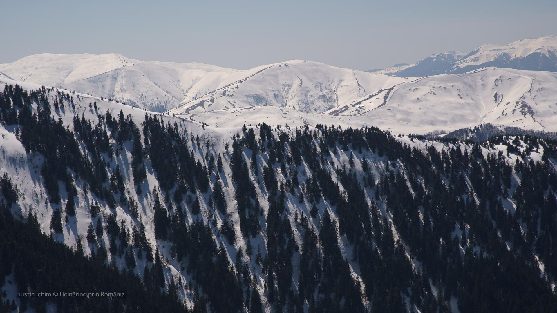 Vedere spre Munții Baiului