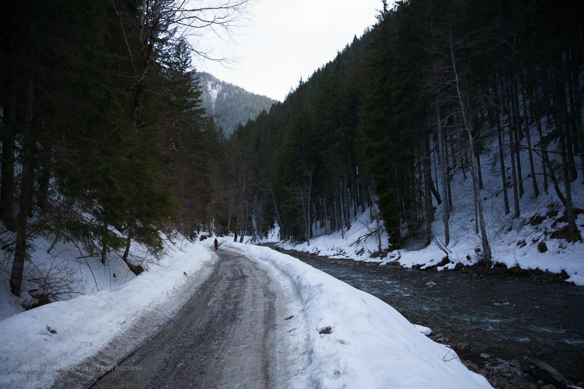 Valea Azugii, Râul Azuga