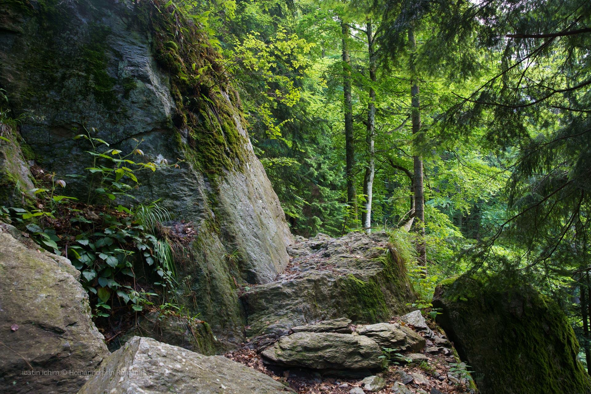 Traseul spre Podragu, săpat in stâncă