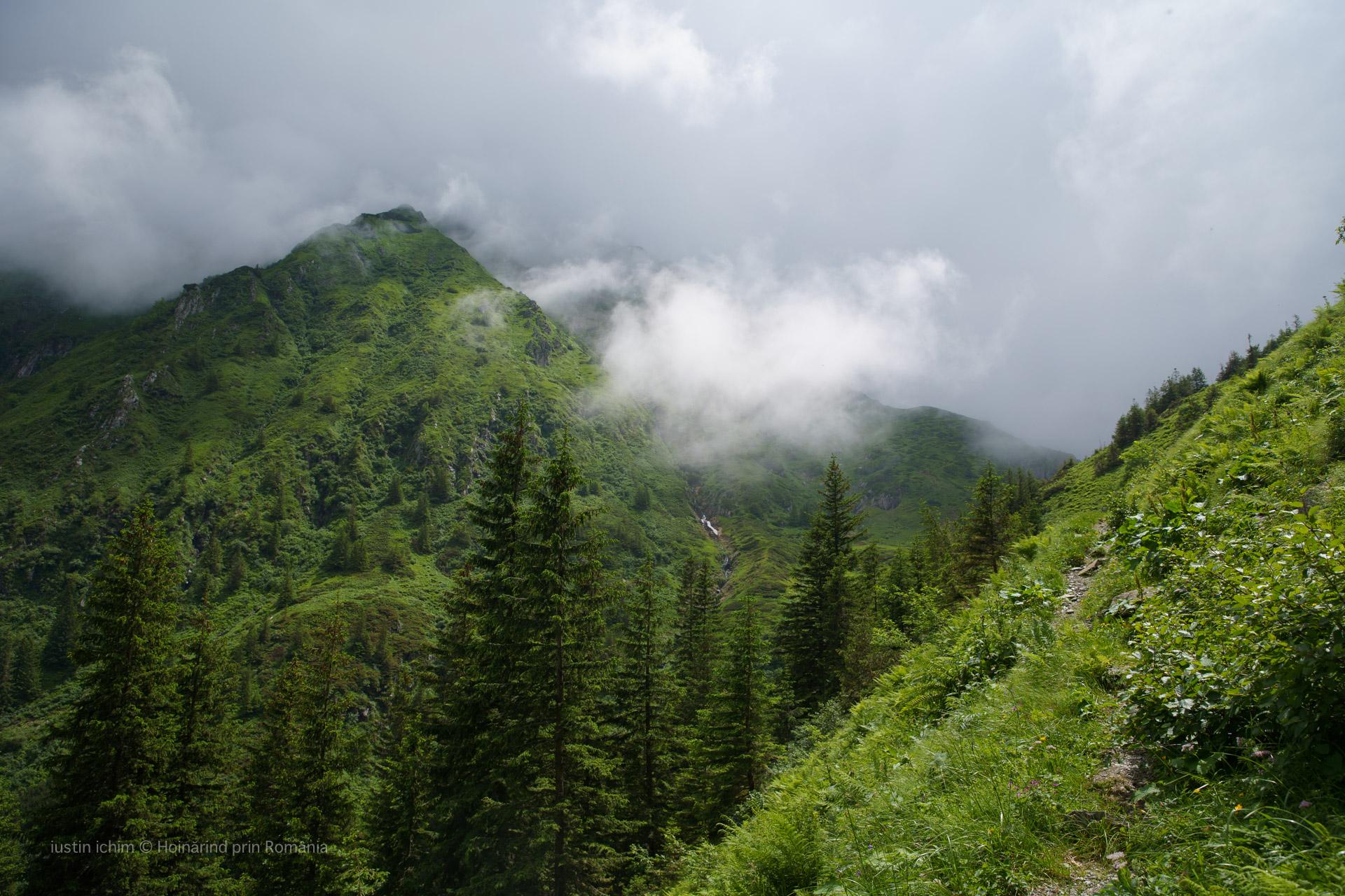 Peisaj, traseu Podragu, Făgăraș