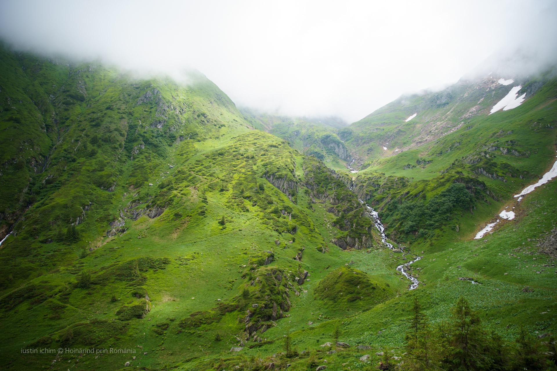 Căldarea Podragului, Valea Podragului, Rezervatia Golul Alpin al Munților Făgăraș