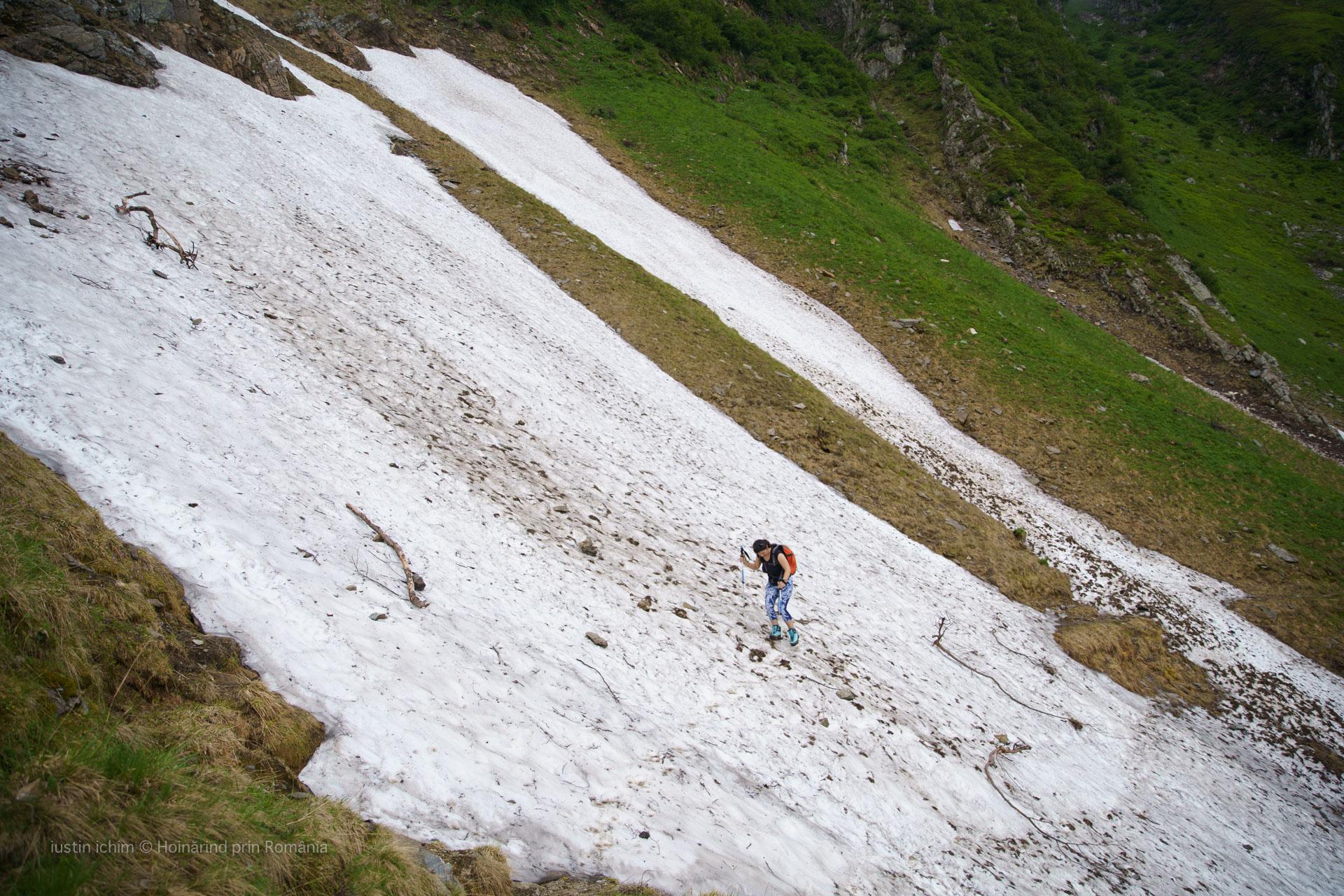 Limba de zăpadă in traseu