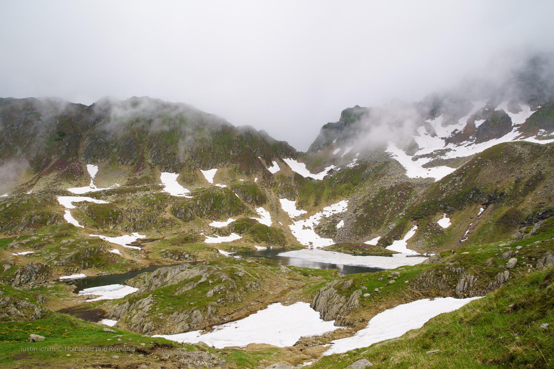 Munții Făgăraș, Cabana Podragu